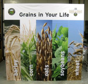 The Grains in Your Life matching game